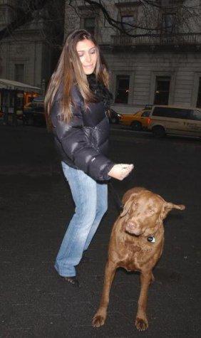 nuptse dog photo-1